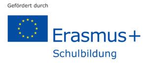 Erasmus Schulbildung Logo